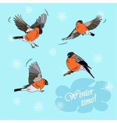 Bullfinches in flight on a blue background vector