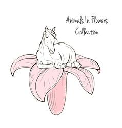 Animals In Flower Collection Horse with flower on vector image vector image
