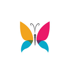Beauty butterfly logo template icon design vector