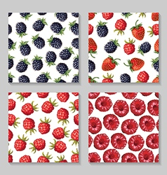 berry pattern set2 vector image vector image