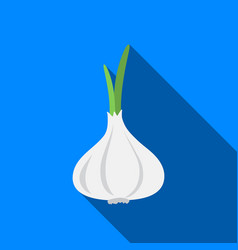 Garlic icon flate singe vegetables icon from the vector