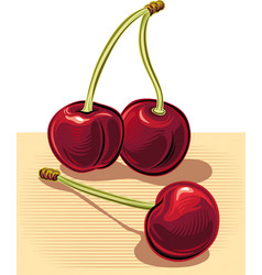 Ripe cherries resting on a plane vector