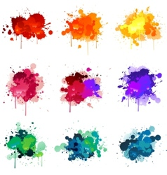 paint splat s vector image