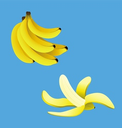 Banana collection vector