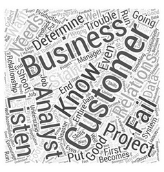 Customer relations and the business analyst word vector