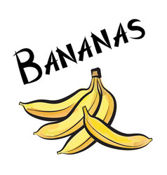 Banana sign isolated bananas fruit tag fresh farm vector