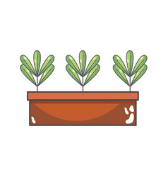 Ecological plants with leaves inside flowerpot vector
