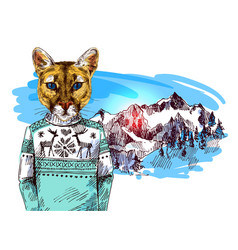 Puma in knitted sweater in mountains landscape vector