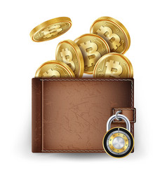 realistic bitcoin wallet locked with vector image