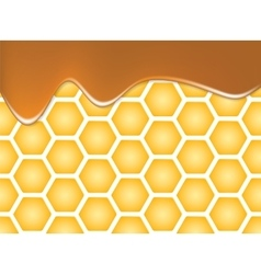 Abstract texture of honeycomb vector