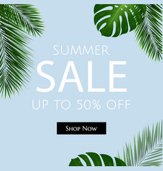 sale poster with palm trees vector image vector image
