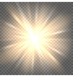 Sun rays on transparent background vector image vector image