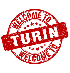 Welcome to turin vector