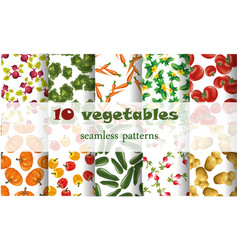 10 mixed vegetables seamless patterns set tomato vector image vector image