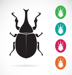 Stag beetle vector