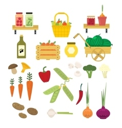 Organic Food Icons Set vector image