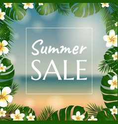 Sale poster with palm trees and plumeria vector