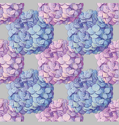 inflorescence hydrangea randomly arranged in vector image