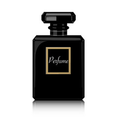 perfume print black bottle haute couture vector image