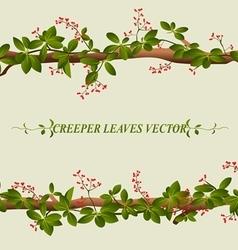 Border of creeper flower vector