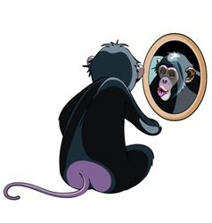 cartoon monkey looking in the mirror vector image vector image