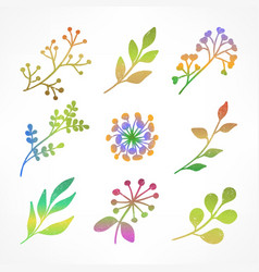 set of color branch vector image vector image