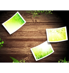 Nature photos at wooden background vector