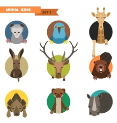 Animal avatars vector