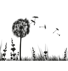 Black and White of a Dandelion in a Meadow vector image