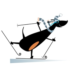 Dog a skier vector image