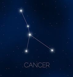 Cancer constellation in night sky vector