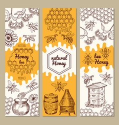 banners with honey product pictures bee vector image vector image