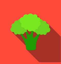 broccoli icon flate singe vegetables icon from vector image