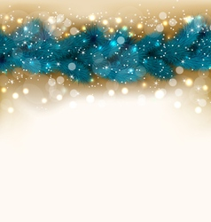 Christmas shimmering background with fir twigs vector