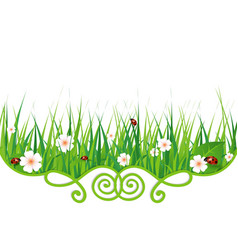flowers grass and ladybugs vector image