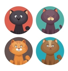 Cute set kittens pet shop vector