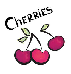 Cherry sign isolated berry fruit tag fresh farm vector