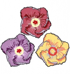 graphic flowers vector image