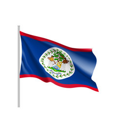 waving flag of belize vector image vector image