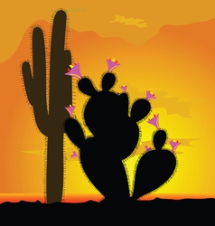 Cactus with pink flower vector