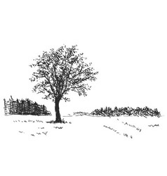 Hand sketch the landscape with tree vector