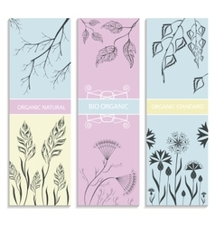 Decorative floral botanical card vector