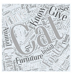 Foster Cat Care Word Cloud Concept vector image