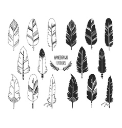 Hand drawn set of feathers and silhouette vector image