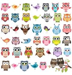 Set of color cartoon owls vector image vector image