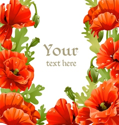 Framing of red poppies for your text vector