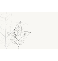 background with branch with leaves vector image vector image