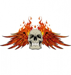 skull wings and flames vector image