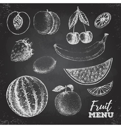 Vintage chalk drawing set of fresh fruits sketch vector