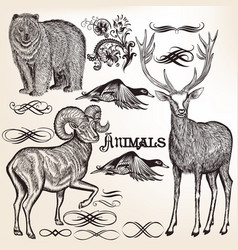 set of detailed animals for design vector image vector image